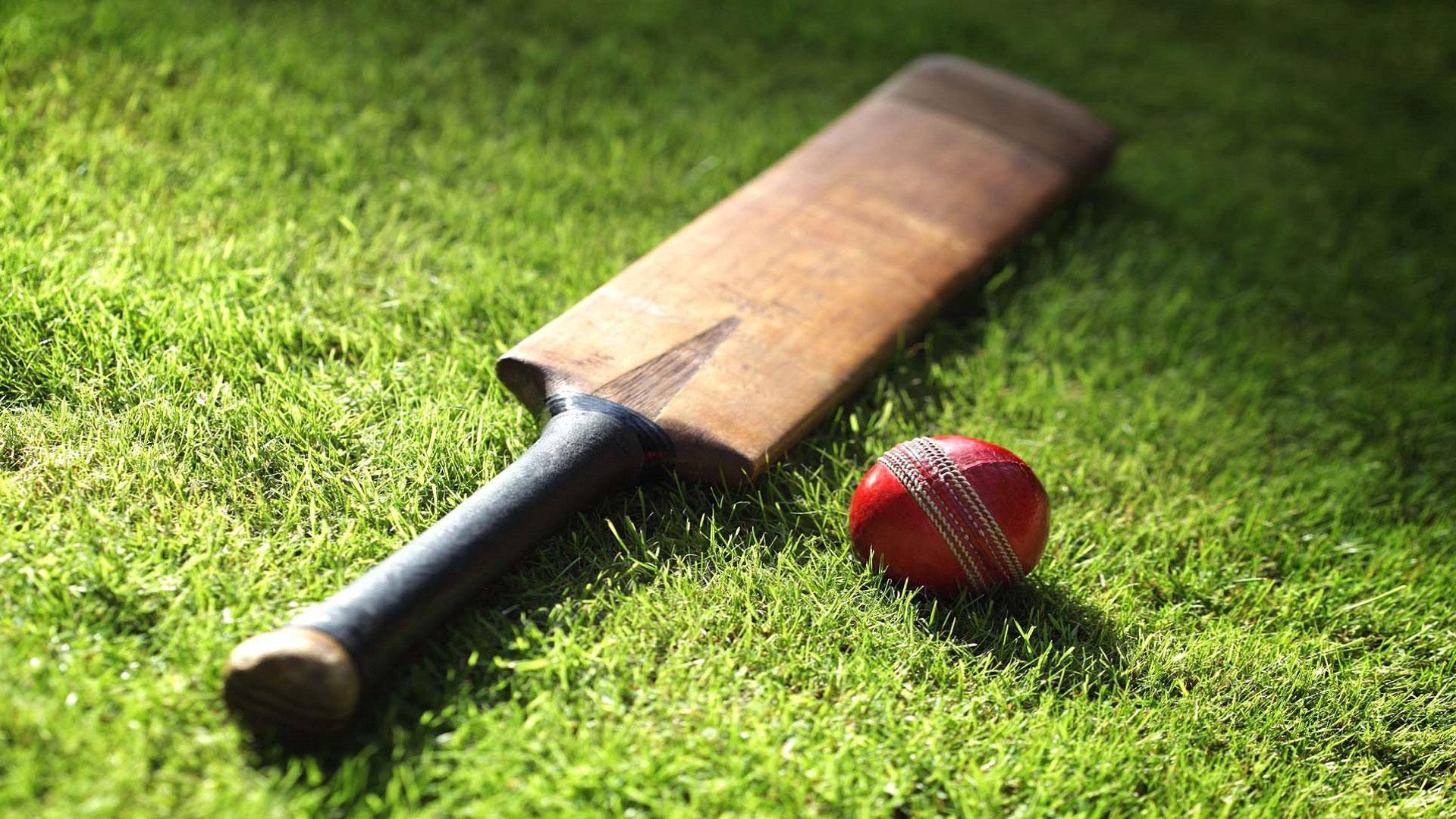 Cricket Bate