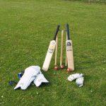 Cricket itself